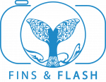 fins-and-flash-logo-ver-01